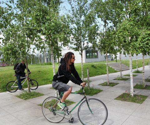 Fietstocht 'Klein en groot groen in de stad' (Volzet)