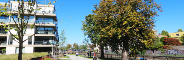 Klimaatrobuust ontwerpen in de stad Gent (fietstocht)