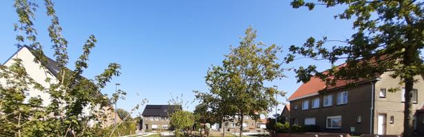 Cool Towns: Hoe Merelbeke hittestress aanpakt