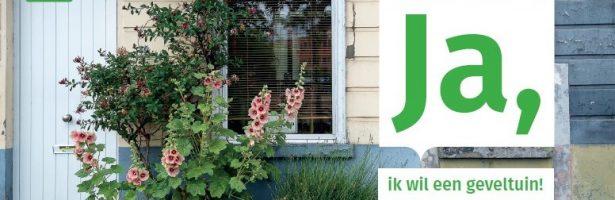 Het succesverhaal van Gentse geveltuinen en groenslingers